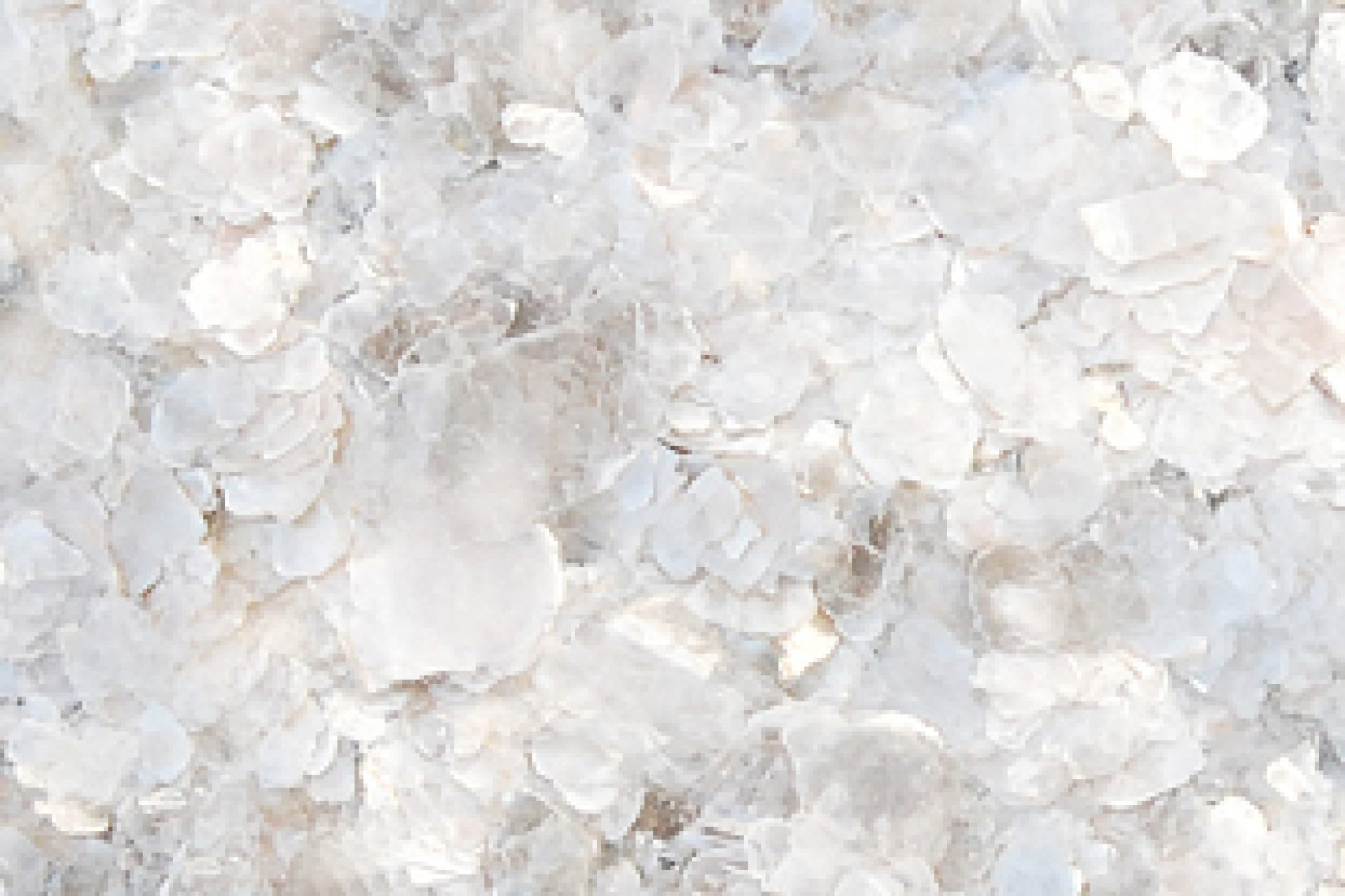mica flakes2